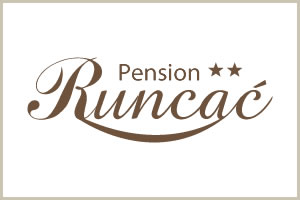 Pension Runcac